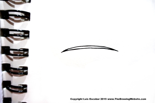 Micron line example thick and thin 01