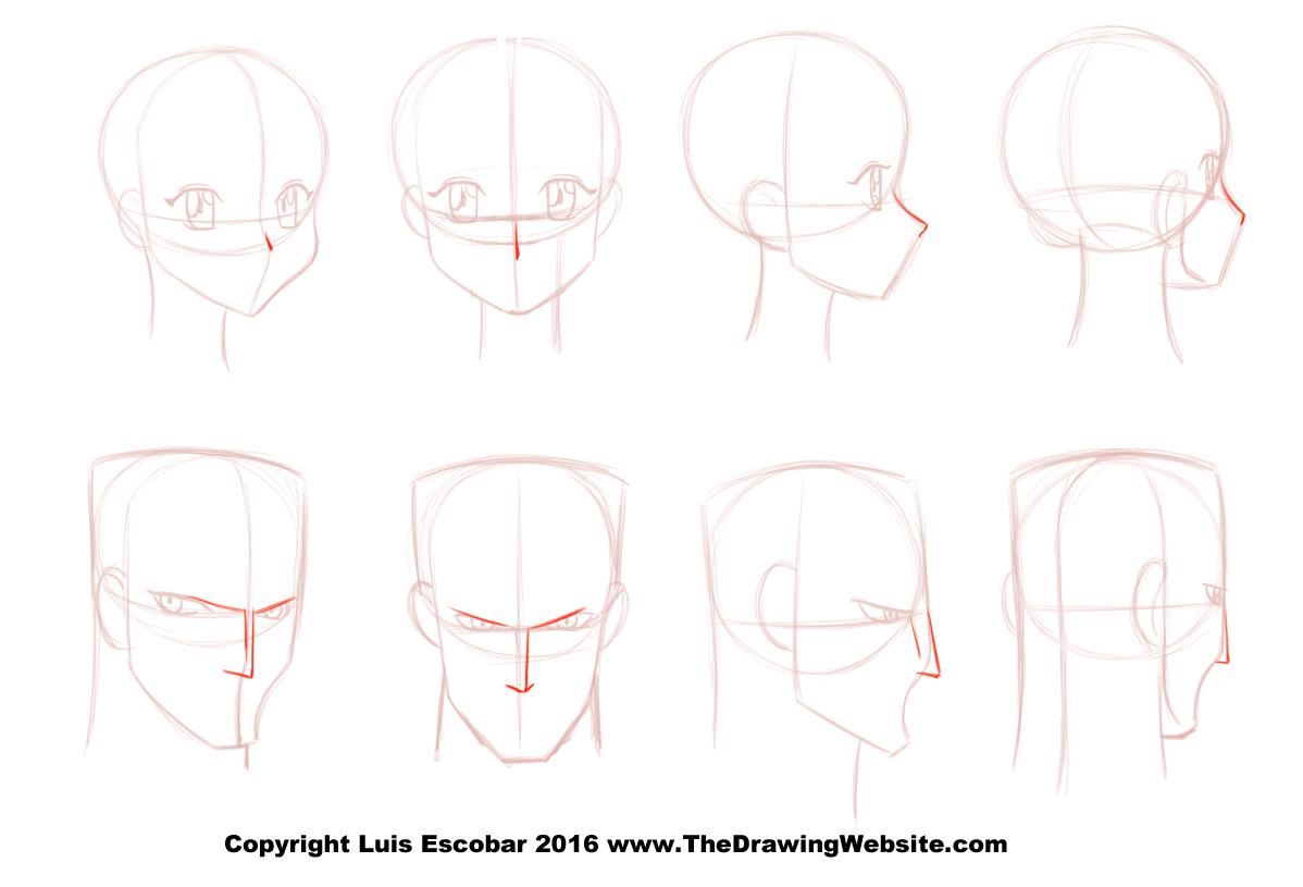 takahiro-kimura-anime-nose-turnaround