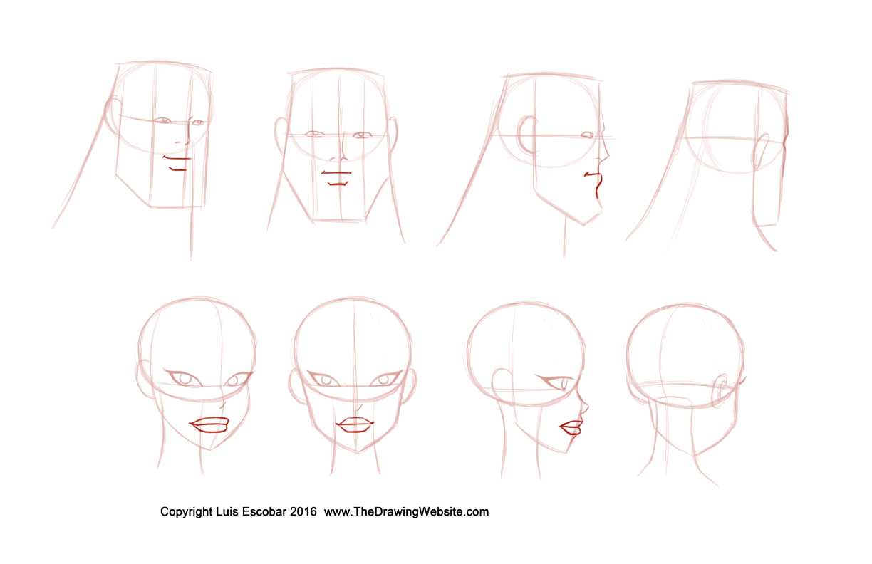 bruce-timm-style-noses-formula-turn-around-mouth